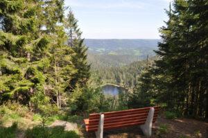 Sitzbank mit Ausblick den Schwarzwald in der Region Baiersbronn
